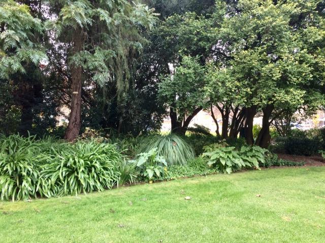 Botanical gardens, FullSizeRender 12
