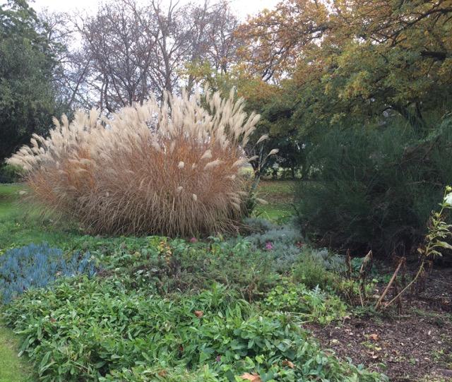 Botanical gardens, FullSizeRender 7