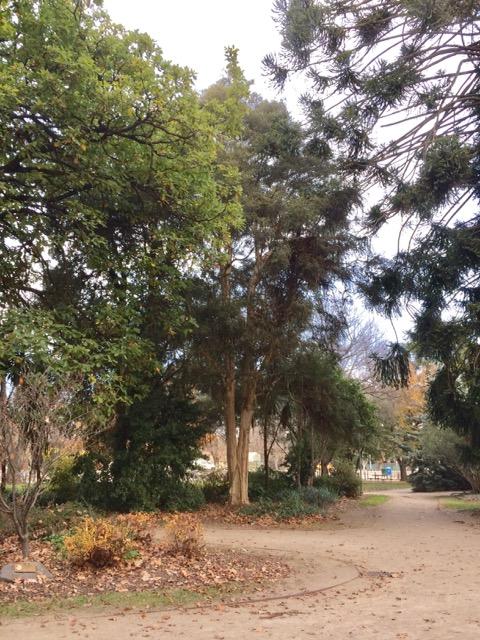 Botanical gardens, FullSizeRender