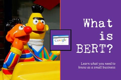 Featured image for 'what is BERT?'